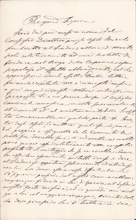 Marquis Gino Capponi  - Autograph; Signed Letter with Information of Rural Kindergartens in Tuscany - 1868