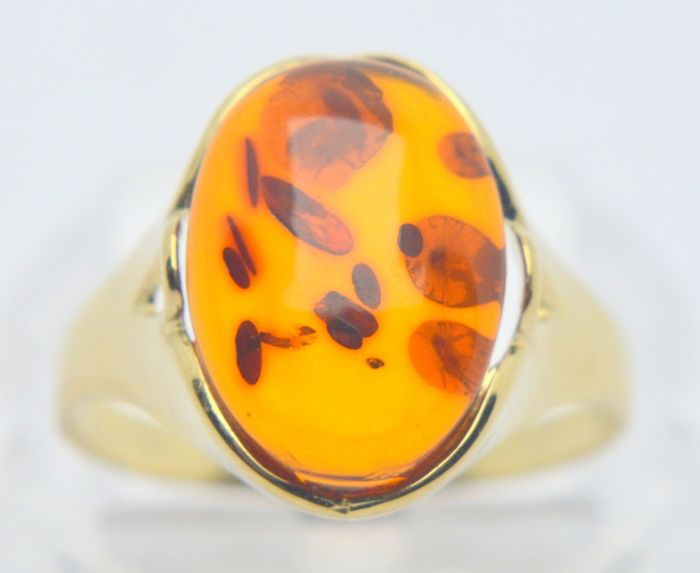 333 Yellow gold - Ring - 5.00 ct Amber - No indication of treatments