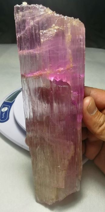Top Quality Double Terminated Etched Pink Kunzite  Crystal - 20×2.7×5.8 cm - 620 g - (1)