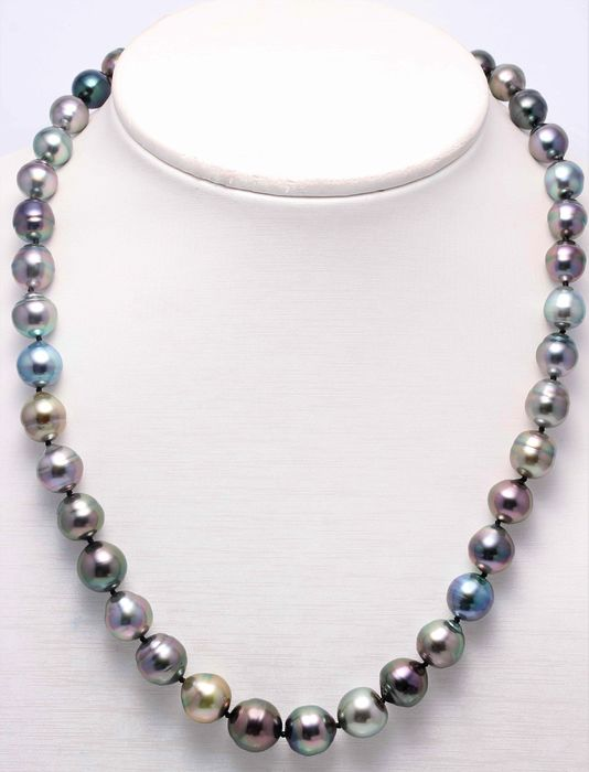 NO RESERVE PRICE - 925 Silver - 8x12mm Multi Colour Tahitian Pearls - Necklace