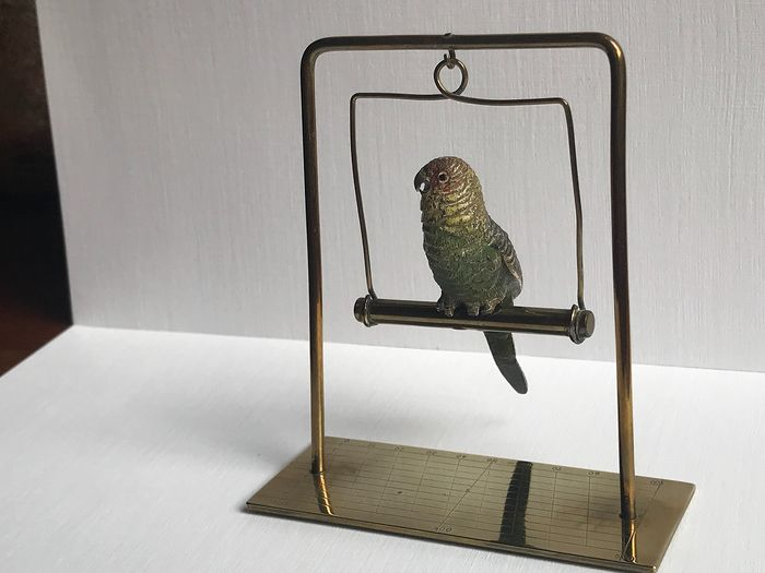 Sculpture, Viennese bronze - Parrot - on metal swing (1) - Bronze (cold painted) - Early 20th century