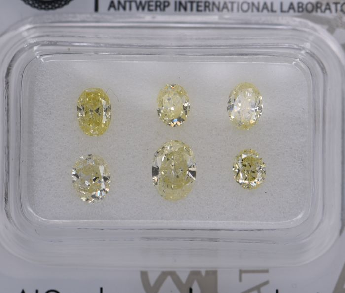 6 pcs Diamant - 1.45 ct - Ovaal - fancy intens yellow - SI2, SI3, No Reserve Price!