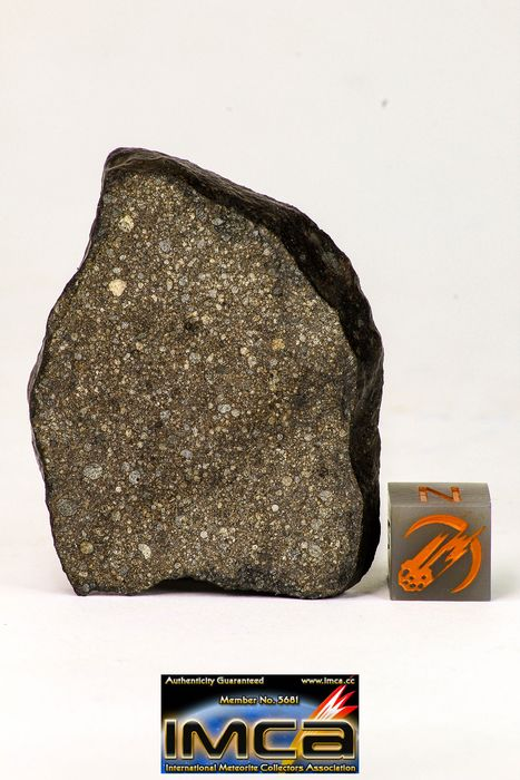 Top Beautiful NWA Polished Section of Chondrite Meteorite Type L3 with Fusion Crust - 26.3 g