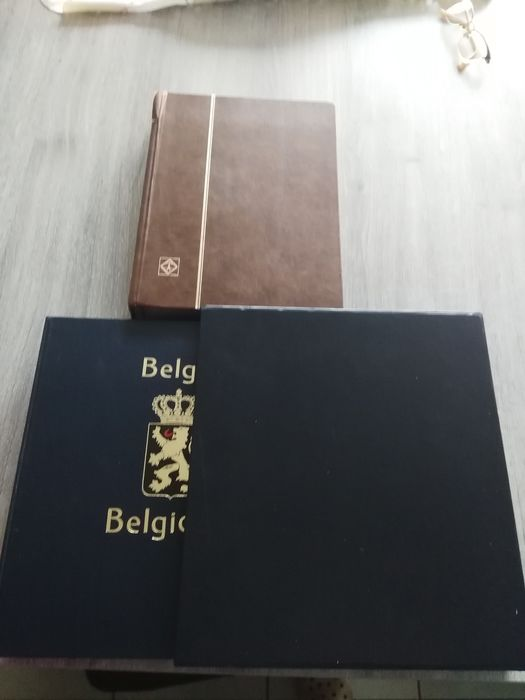 Belgium - Collection back of the book in a DAVO and in a stock book