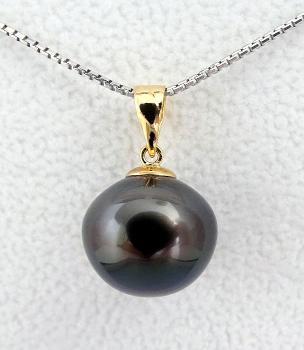 NO RESERVE PRICE - FedEx DELIVERY - Tahitian pearl, Purple Midnight Symmetrical 13.24 X 12.75 mm - Pendant, 18 kt. Yellow Gold