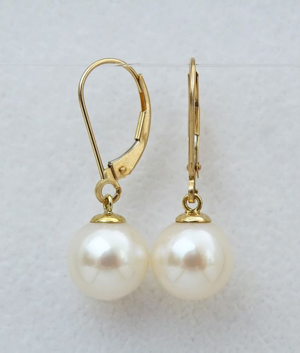 NO RESERVE PRICE - FedEx DELIVERY - South sea pearls, Top Grade 10mm - Earrings, 14 kt. Yellow Gold