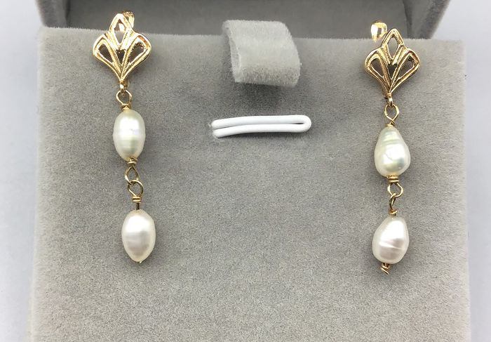 18 kt. Yellow gold - Earrings Pearl