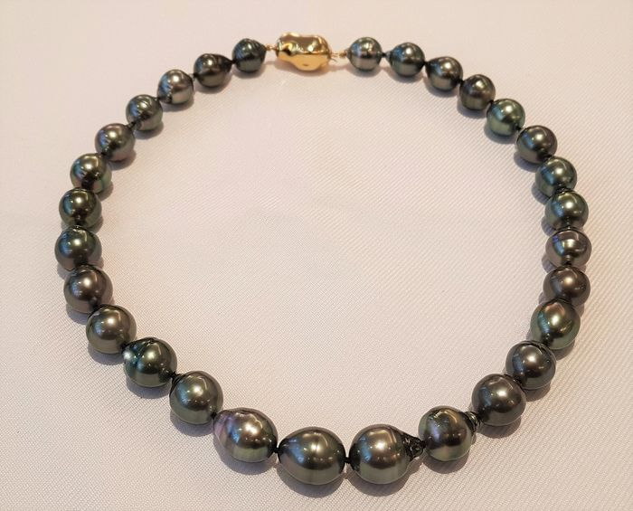 NO RESERVE PRICE - 925 Silver - 11x13mm Peacock Tahitian Pearls - Necklace