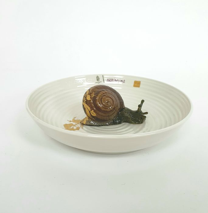 Hella Jongerius - Nymphenburg - Objeto cerâmico (1) - Bowl with Snail