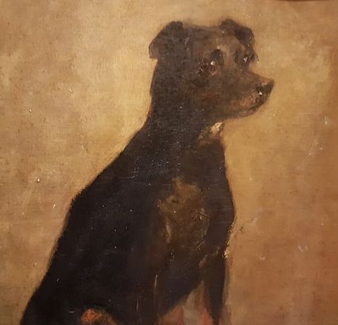 Unknown - Portrait of a dog
