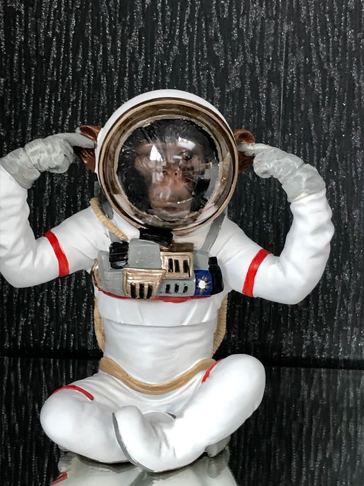 unique item monkey in space suit- 1236g - Monkey -  monkey in space suit and helmet