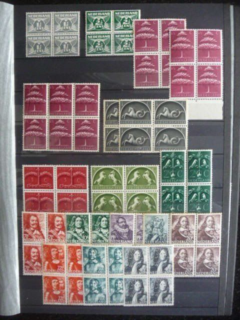 Países Bajos 1926/1987 - Collection of blocks of four in stock book