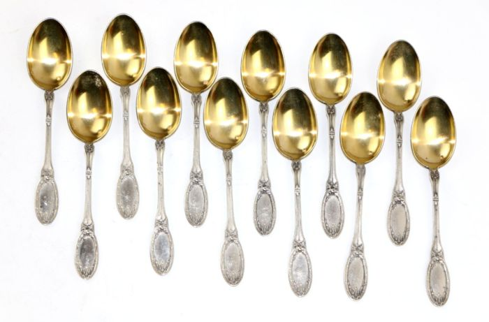 Spoon (12) - .950 silver - Lois Coignet - France - Late 19th century
