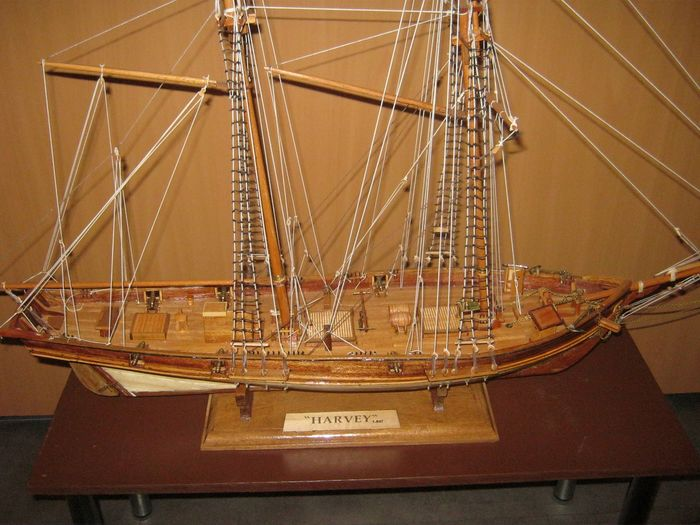 Ship model, Baltimore Clipper Harvey (1847) - Wood - Second half 20th century