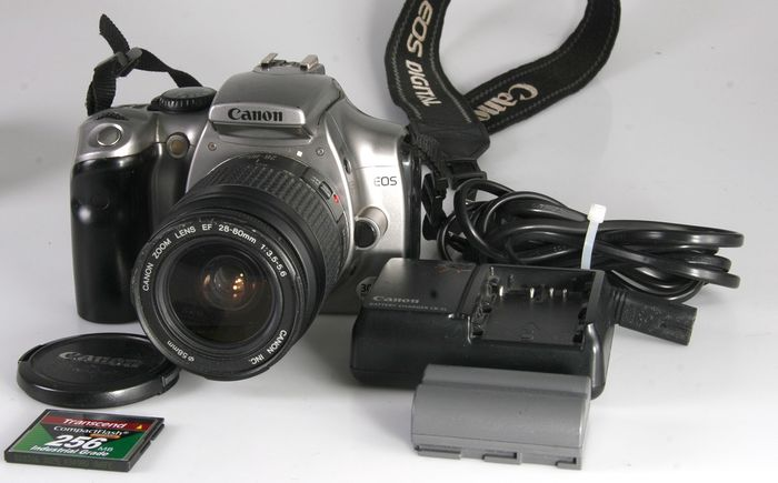 Canon 300D + Canon Zoom 28-80 mm