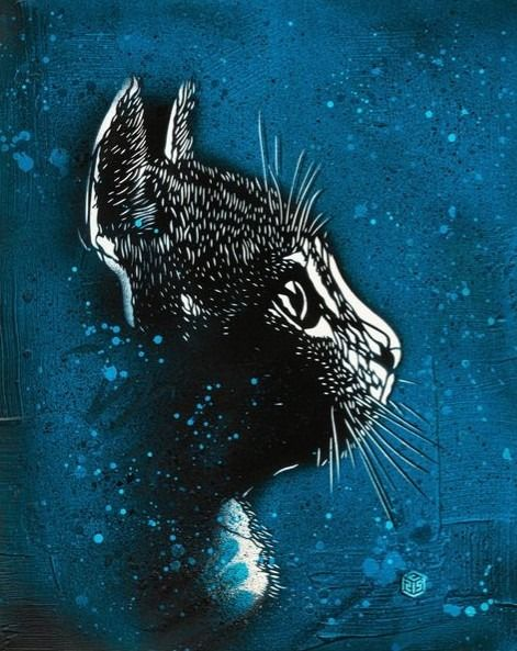 C215 (Christian Guemy) - Felix