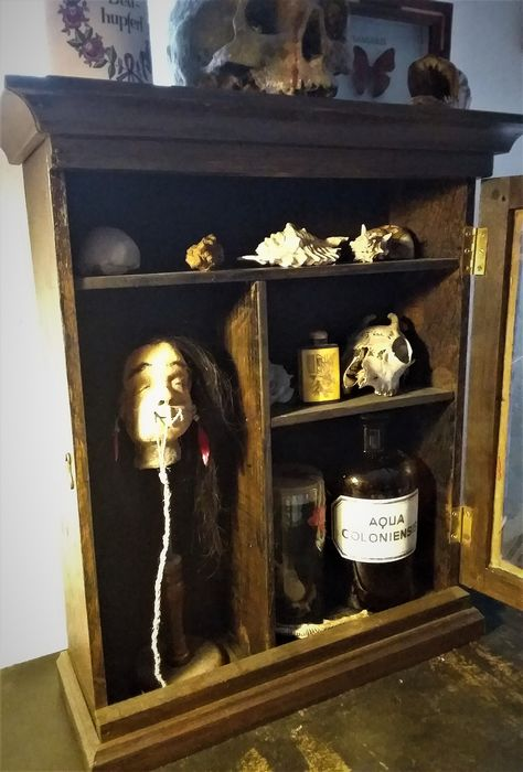 Curiosity Cabinet with various items - n/a - 74×16×46.5 cm - 16