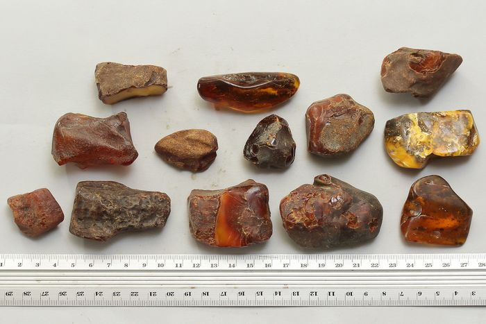 Amber (fossilized resin) Mineral Collection - 37×40×66 mm - 204 g