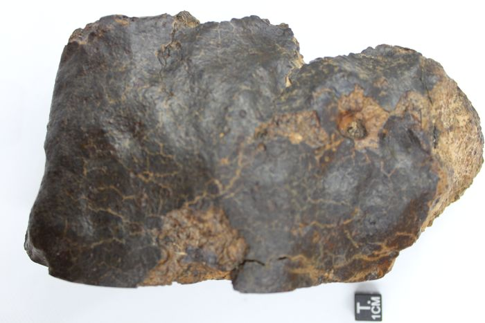 OFFICIALLY CLASSIFIED & APPROVED  NWA 12629 Chondrite Meteorite - 17×11×8 cm - 1187 g - (1)