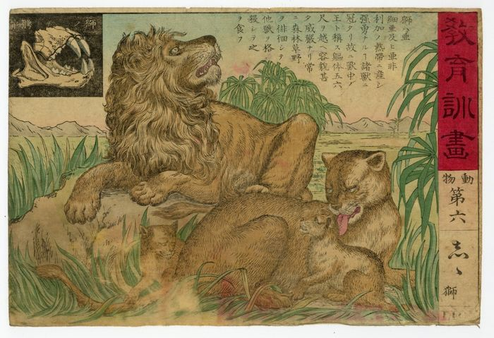 "Original woodblock print - Uknouwn - 'Shishi' 獅子 (Lions) - No 6 from the series ""Kyoiku kunga"" 教育訓画 (Educational Images) - 1886"