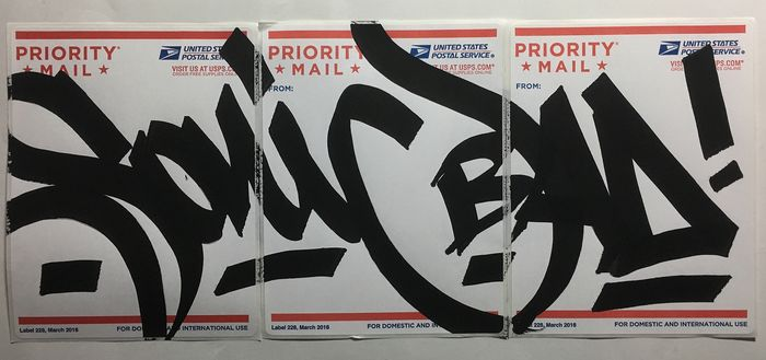 Sonic Bad - Sonic USPS Sticker
