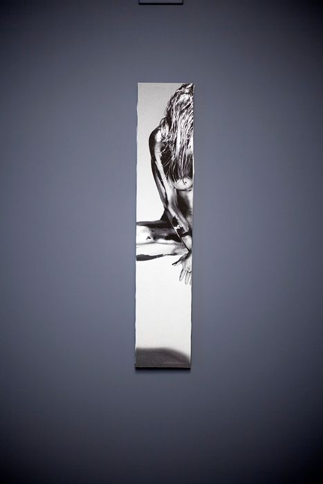 Guido Argentini (1966-) - Silvereye, Stamped test on canvas