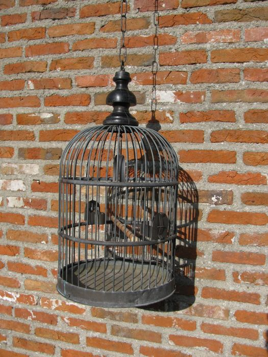 Large Decorative Old Copper Bird Cage Copper Wood Catawiki