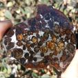 Check out our Meteorite Auction