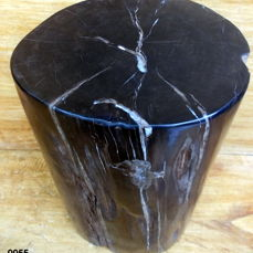 Petrified Wood - trunk section - Dipterocarpus - 40×25.5×22.5 cm