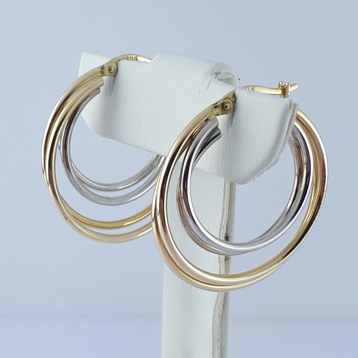 14 kt. White gold, Yellow gold - Ladie's Earrings