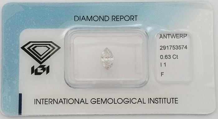 Diamant - 0.63 ct - Markies - F - P1
