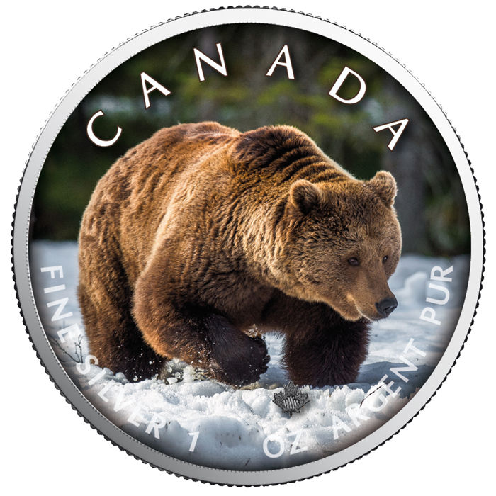 Canada - 5 Dollars 2019 - Maple Leaf Wildlife - Grizzly - 1 oz - Zilver