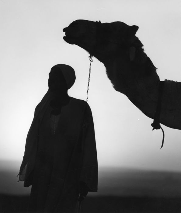 Kees Scherer (1920-1993) - Man with his camel - Gizeh - Egypt 1968