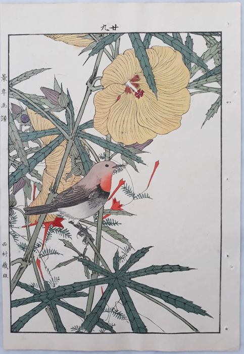 "Illustration, Original woodblock print - Imao Keinen (1845-1924) - 'Japanese robin and hibiscus' -From ""Keinen kacho gafu"" 景年花鳥画譜 (Keinen's Album of Flowers and Birds) - 1891"