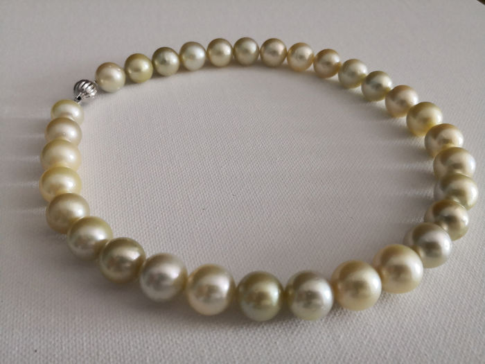 12,5 - 14 mm, South sea pearls - Necklace