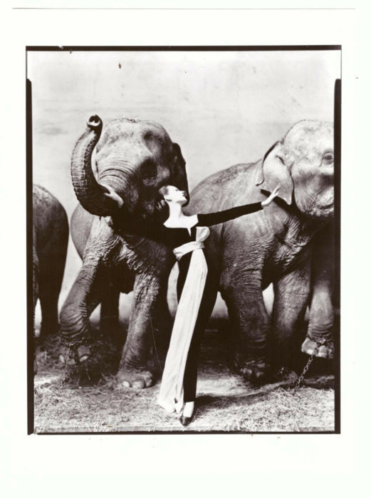 Richard Avedon (1923-2004) - 'Dovima with Elephants', Evening Dress by Dior, Cirque d'Hiver, Paris, August 1955