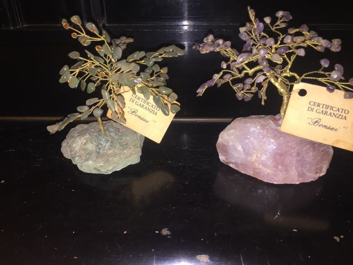 Saplings with hard stone - natural stone