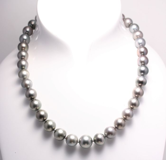 NO RESERVE PRICE - 14 carats Or Jaune - Perles de Tahiti Rondes 10.2x12.8mm - Collier