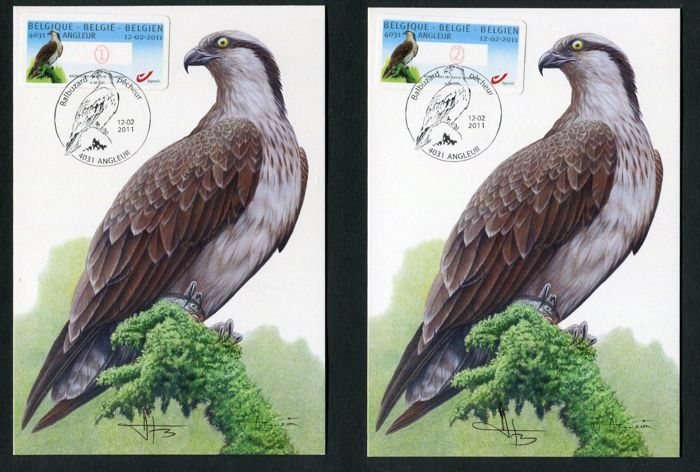 België 1986/2008 - Birds by Buzin with signed cards and a complete series of preos