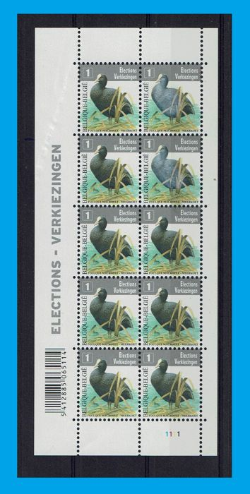 Belgium 2010 - Coot Sheetlet of 10 pcs. curiosity Two right hand side stamps with blurry print - OBP / COB 4042
