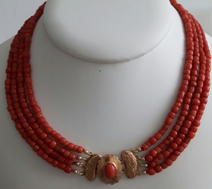 14 kt. Yellow gold - Necklace - Blood coral