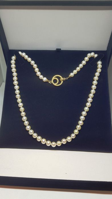 18 kt. Yellow gold, cultured sea pearls - Necklace, susta in 18 carat gold-pearls 6.5 mm carats 116.00 Mixed