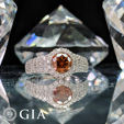 Jewellery Auction (Exclusive & Certified)