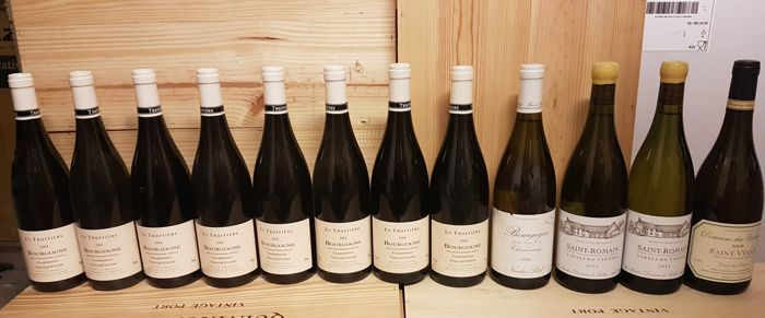 Mixed lot -  Burgundy White - Bourgogne - 12 Bottles (0.75L)