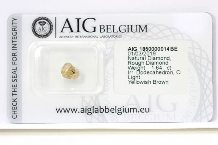 Diamante - 1.64 ct - Diamante en bruto - * NO RESERVE PRICE *