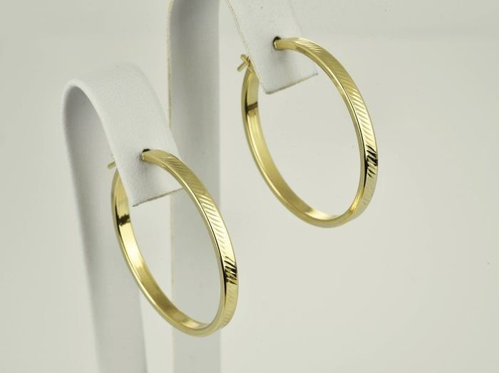 14 kt. Yellow gold - Earrings