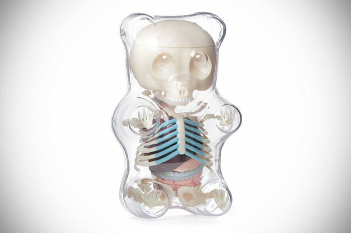 Jason Freeny - Gummie Bear Anatomy