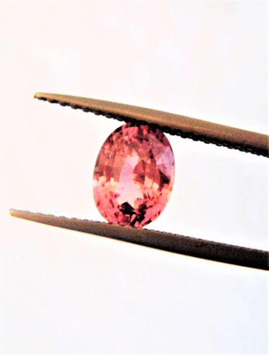 Orange-Pink Padparadscha Safir - 1.54 ct