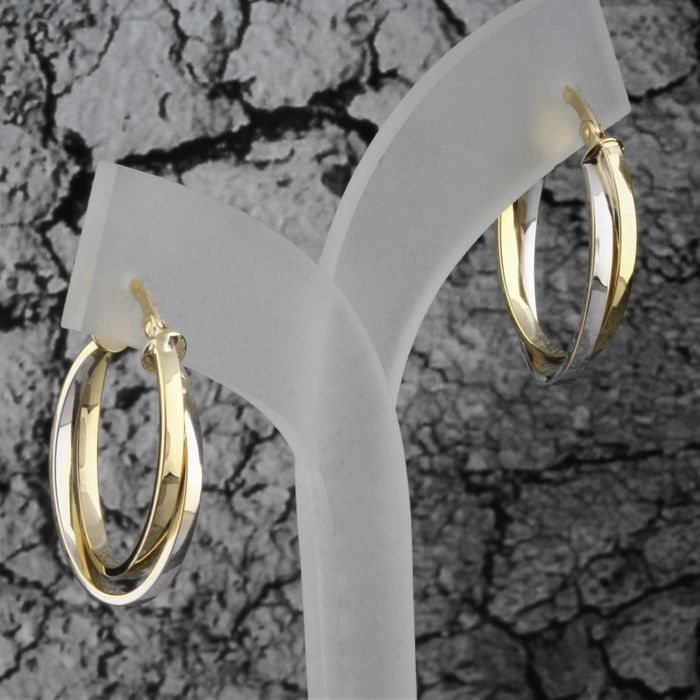 18 kt. Bicolour, Gold, White gold, Yellow gold - Earrings