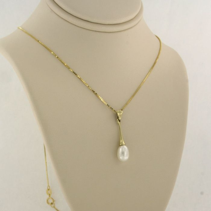 14 kt. Yellow gold - Necklace with pendant Pearl